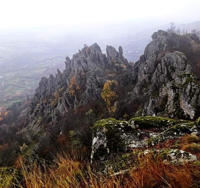 Dolina jorgovana