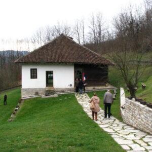 Struganik1