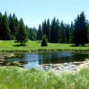 jezero Golija23