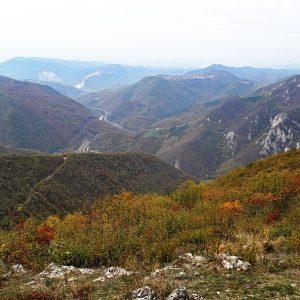 Ovčar123